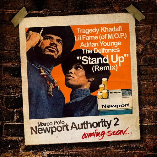 newport authority 2-cover