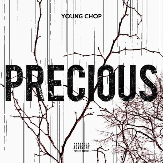 precious-cover