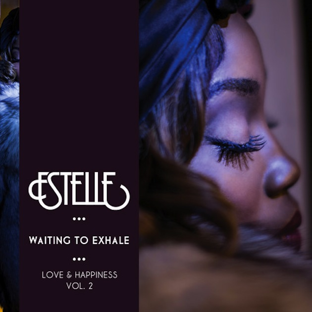 waiting-to-exhale-2-cover