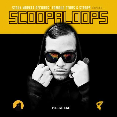scoopaloops