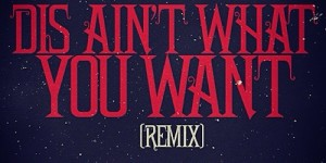 dis aint what you want-remix