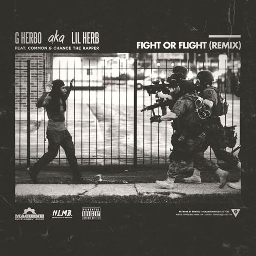 fight or flight remix