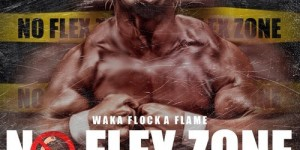 no flex zone waka