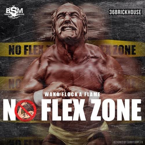 no flex zone waka