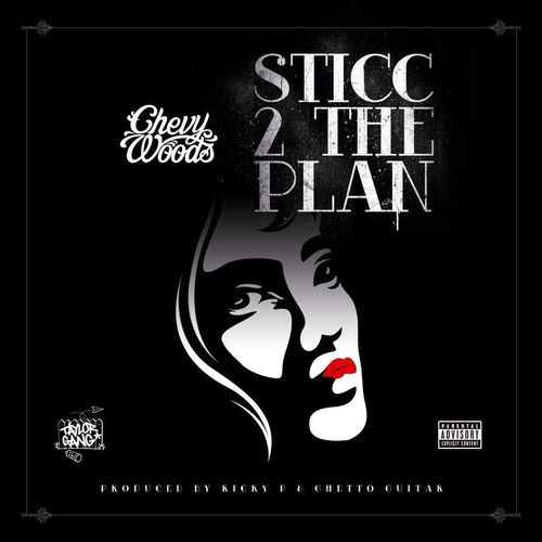 sticc 2 the plan