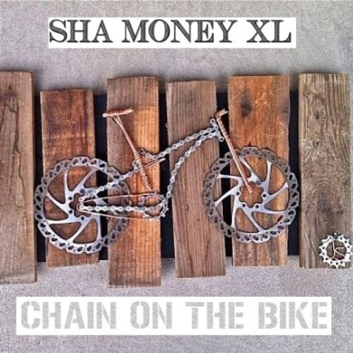 chain on the bike