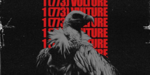 1773vulture